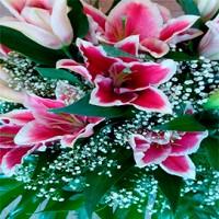 Comprar cesta flores en una floristeria de Logroño