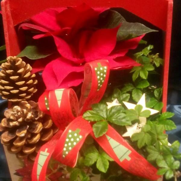 Cesta de flores navidad, envia flores en navidad.