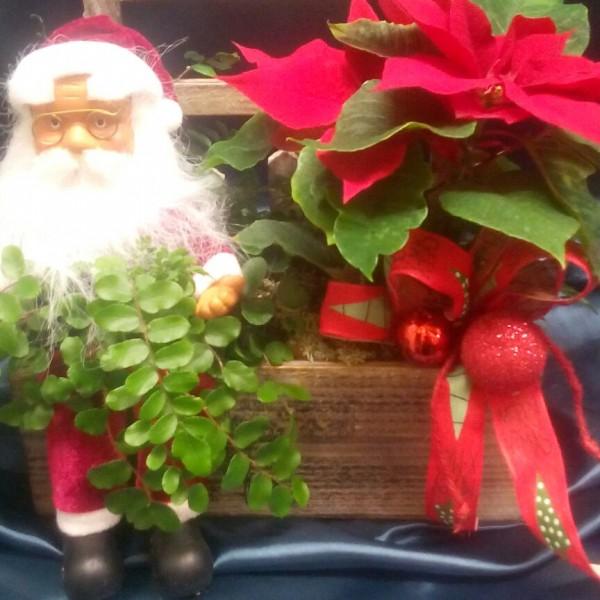 Cesta flores papá Noel